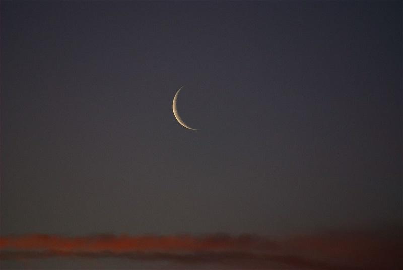 "Photo of حان الوقت لإنهاء معضلة ""ليلة الشكّ"" الدكتور نضال قسوم"