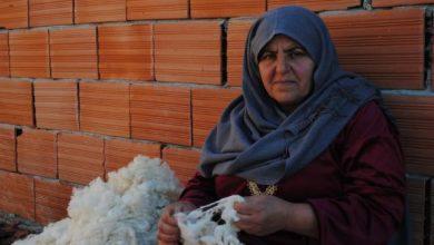 Photo of اليوم العالمي للمرأة الريفية