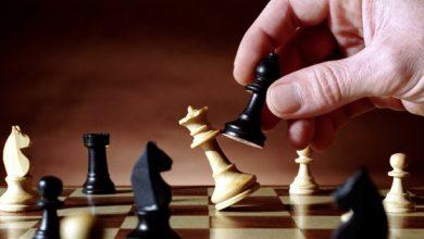 chess كتب شطرنج