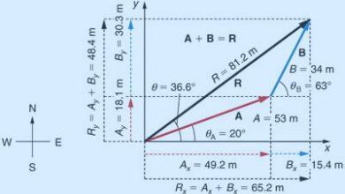 Photo of هل الأشعة مفهوم رياضي أَم فيزيائي؟