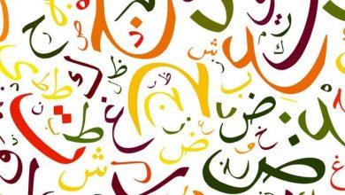 Photo of أصحيح أن اللغة العربية تحتوي على 12 مليون كلمة بدون تكرار؟