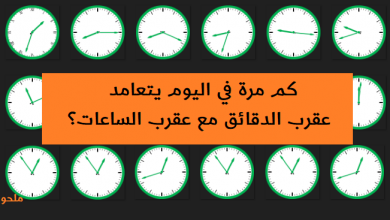Photo of كم مرة في اليوم يتعامد عقرب الدقائق مع عقرب الساعات؟