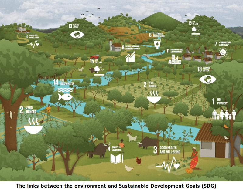 The links between the environment and Sustainable Development Goals (SDG)